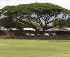 ハワイ,小学校