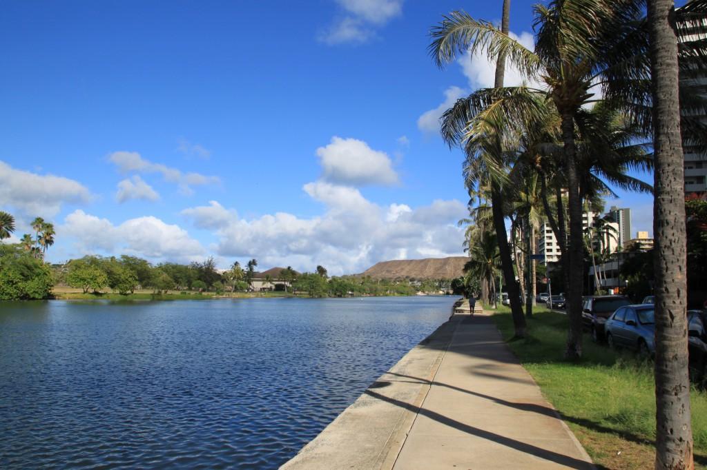 ハワイ,アラワイ運河,散歩