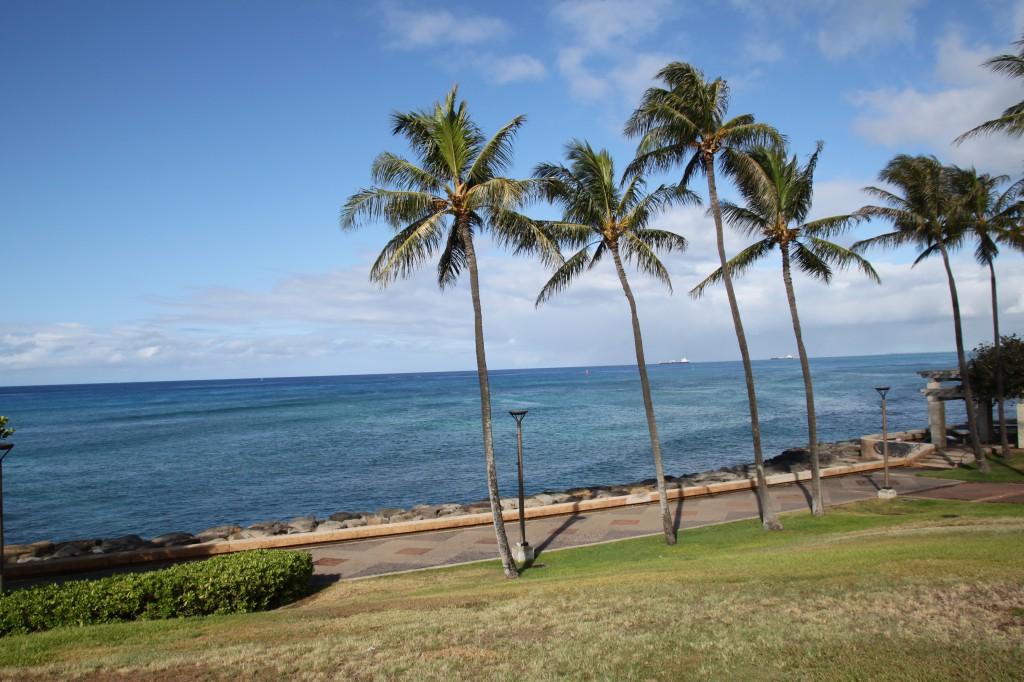 公園,ハワイ