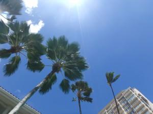 ハワイ,天気,夏