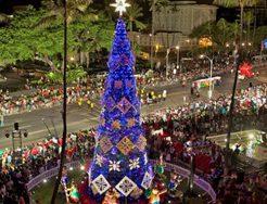 ハワイ,クリスマス,12月
