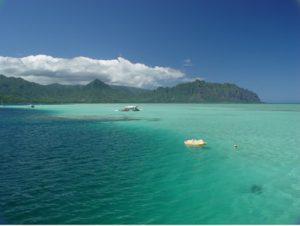 ハワイ,スキューバ,ダイビング