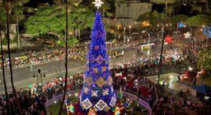 ハワイ,クリスマス,子供
